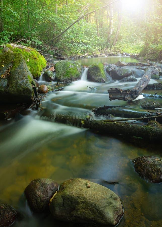 Vaggar den silkeslena vattenströmmen för lång exponering som kör till och med berget, i träna Snabb naturlig kall liten vik med m royaltyfri bild