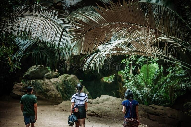 Vaggar den tropiska skogen för asiatiska turister grottalopp i naturconcep royaltyfri fotografi