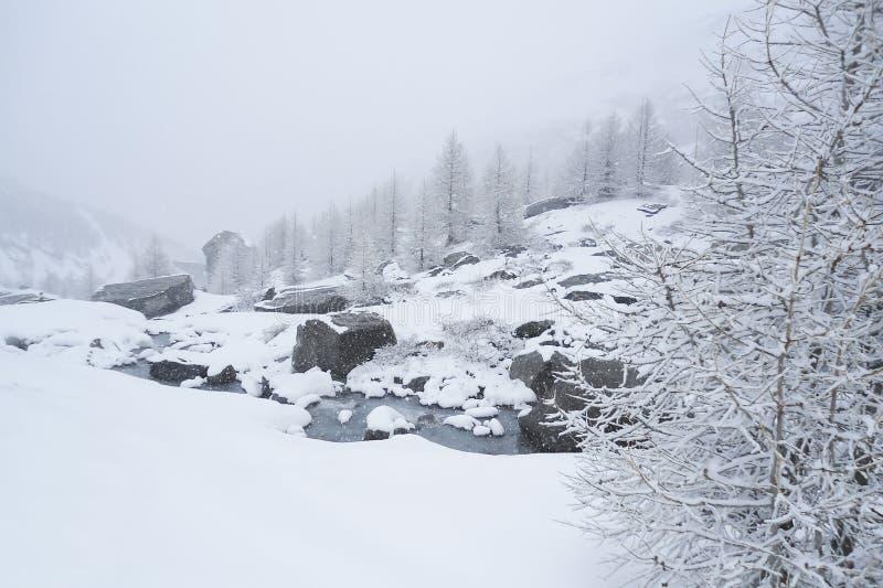 vaggar det alpina landskapet för vintern med en bergström som över bubblar fotografering för bildbyråer