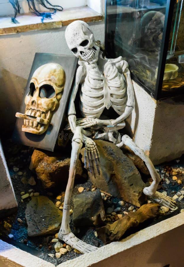 Vaggar det kusliga mänskliga skelettet för allhelgonaaftonen som sitter på en sten, med en spöklik skalle på vaggar bak honom royaltyfri foto