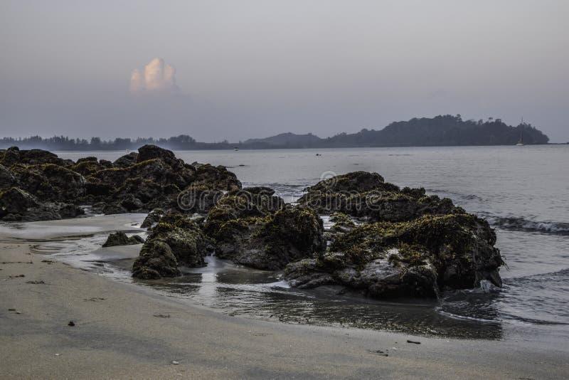 vaggar i blir grund av stranden i morgonen arkivfoto