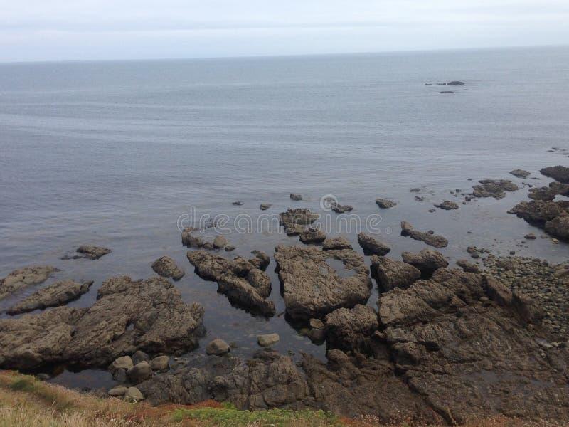 Vaggar i havet royaltyfri foto