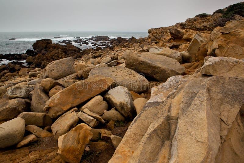 Vaggar och havet arkivbilder