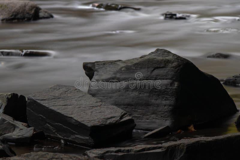 Vaggar på flodstranden royaltyfri bild