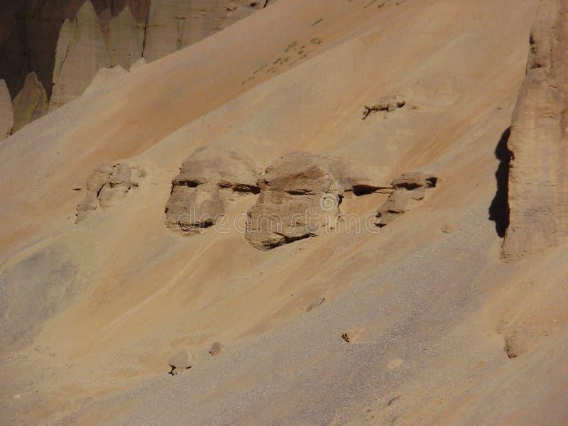 Vaggar på Ladakh berg, framsidor, Indien royaltyfria foton