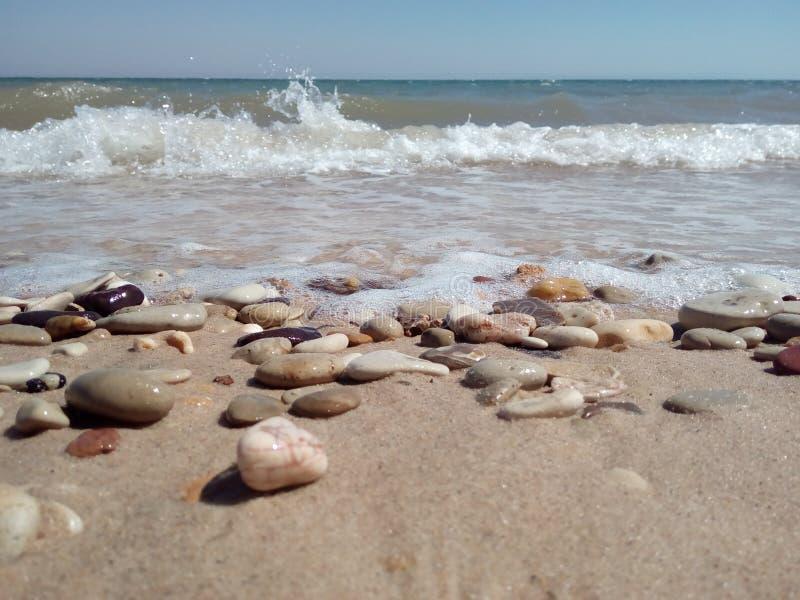 Vaggar stranden royaltyfri foto