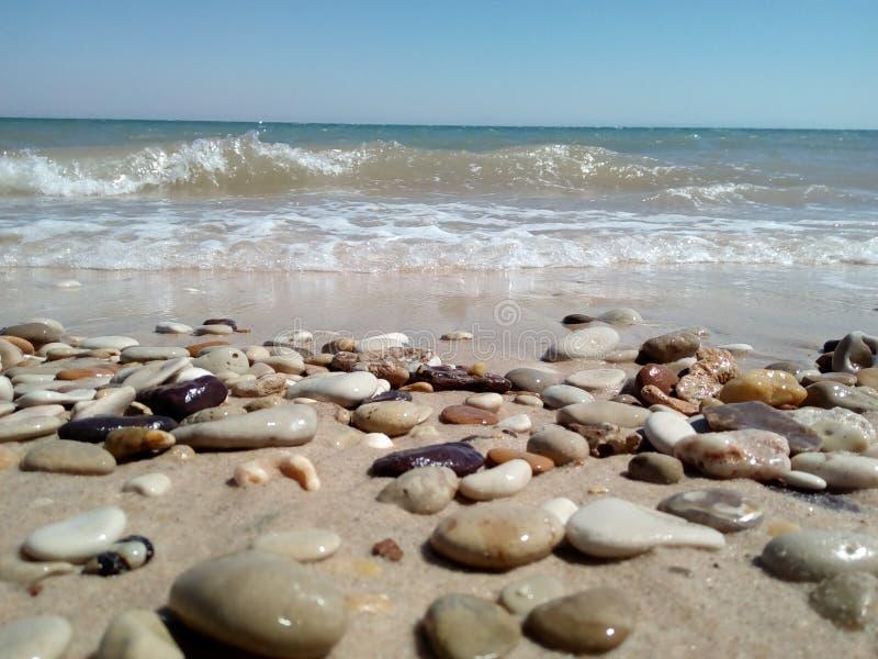 Vaggar stranden royaltyfria bilder