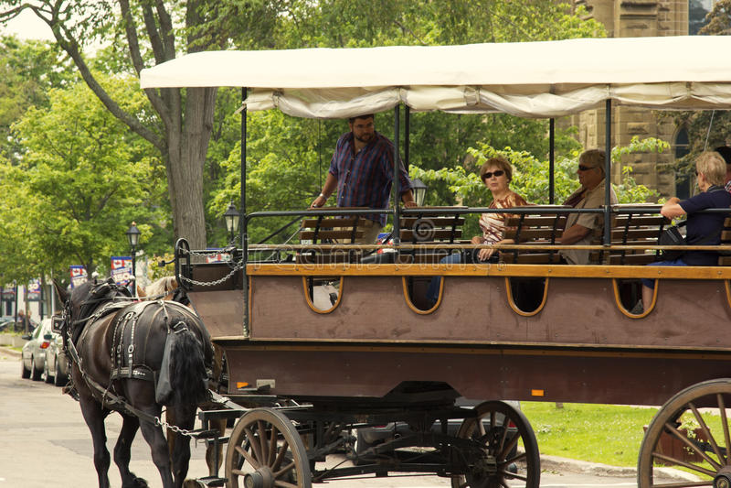 Vagn för två häst med turister i Charlottetown i Kanada fotografering för bildbyråer