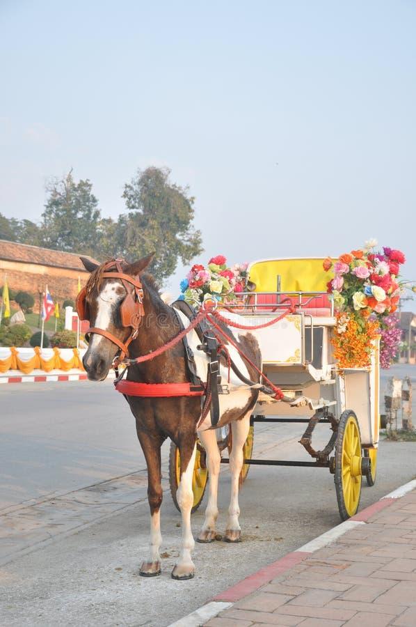 Vagn i Thailand royaltyfri fotografi