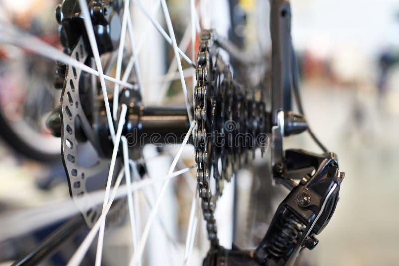 Vagn med den chain sportmountainbiket för bakre hjul royaltyfria foton