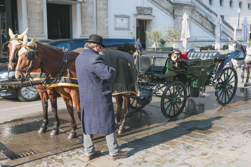 Vagn med hästar och chauffören i Wien väntande på kunder royaltyfria bilder