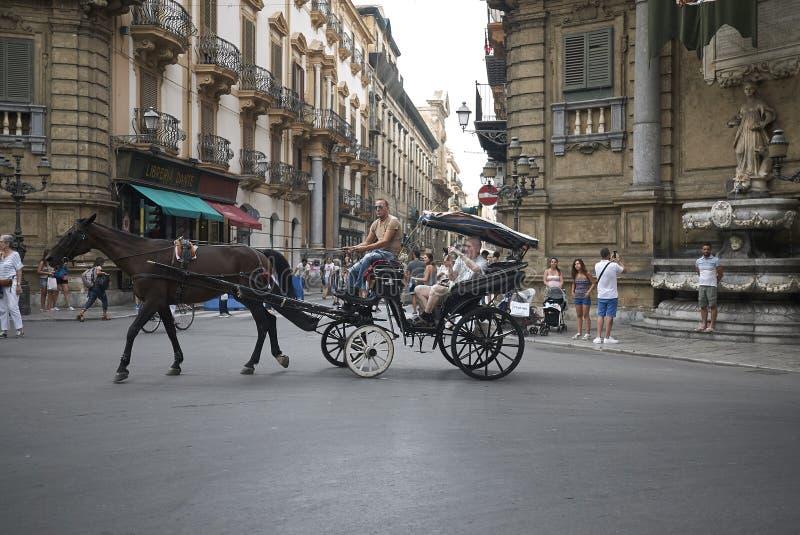 Vagn med hästen royaltyfria bilder