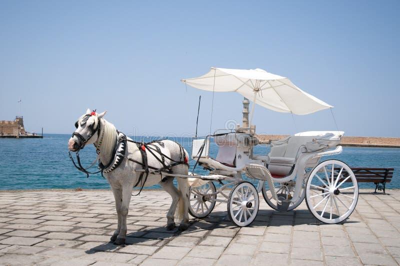 Vagn med hästen på kusten arkivfoto