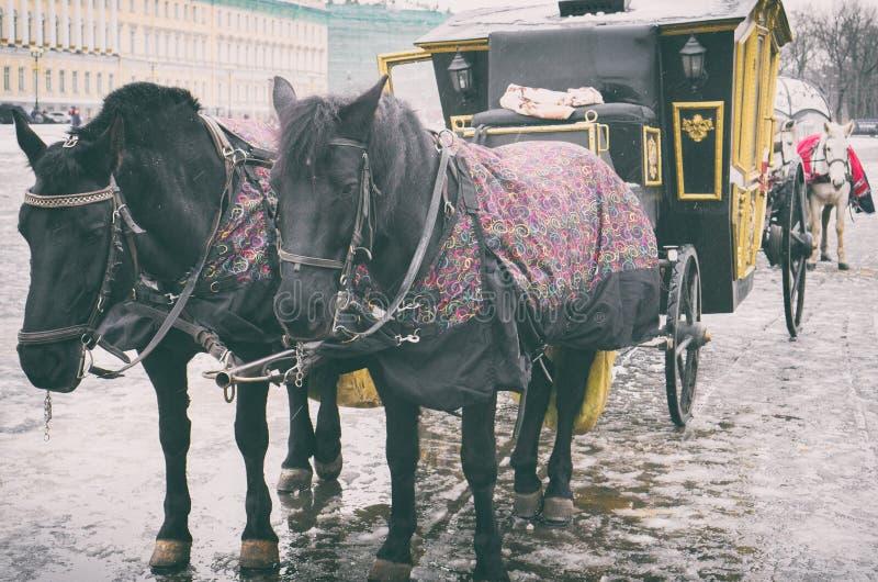 Vagn nära vinterslotten arkivbilder
