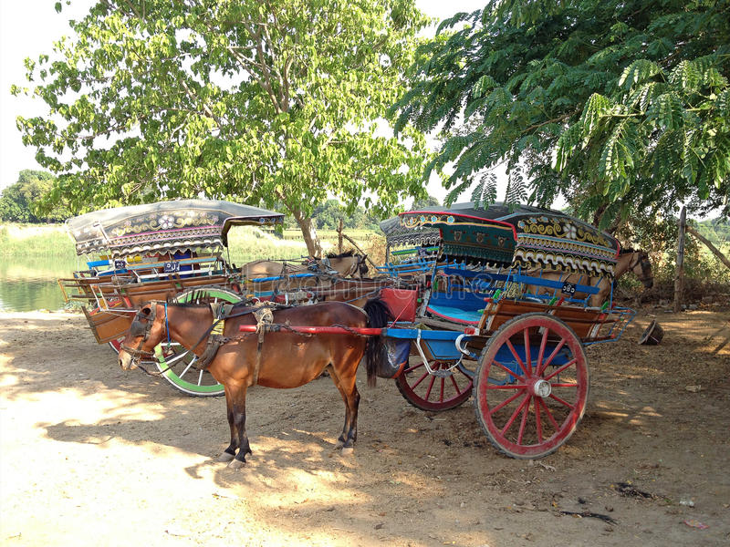 vagn tecknad häst royaltyfria bilder