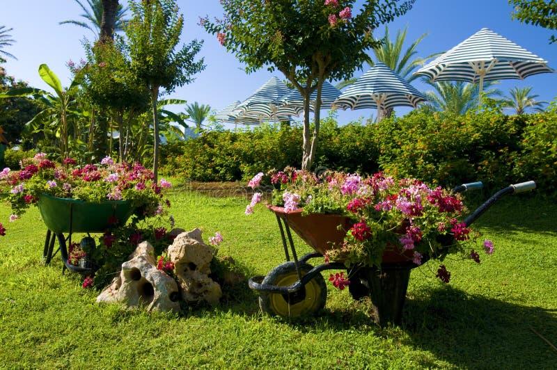 vagnar blommar trädgården arkivbilder