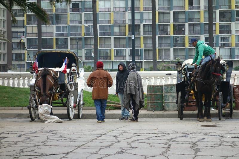 vagnar tecknad häst royaltyfria foton