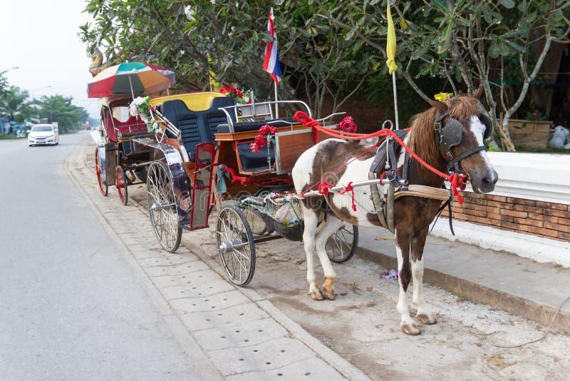VAGNSHÄSTAR POSTERAR Lampang THAILAND arkivbild