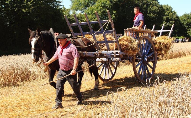 Vagone francese dell'uomo e del cavallo e del fieno immagini stock libere da diritti