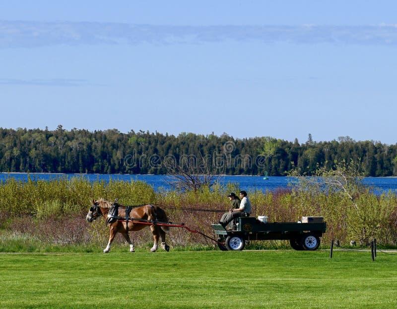 Vagone trainato da cavalli che consegna i pacchetti immagine stock