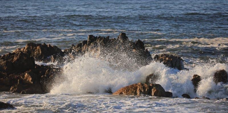 Vague d'océan photographie stock