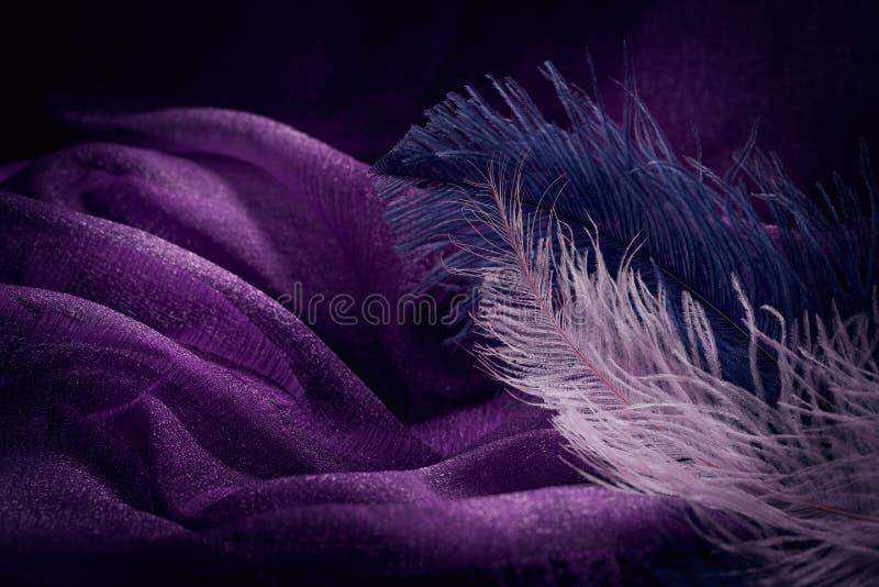 Vague de texture violette élégante de textile avec f rose et bleu fin photographie stock libre de droits