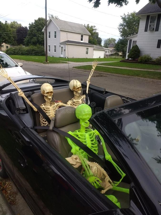 Vague de voiture de squelettes avec le chien image stock
