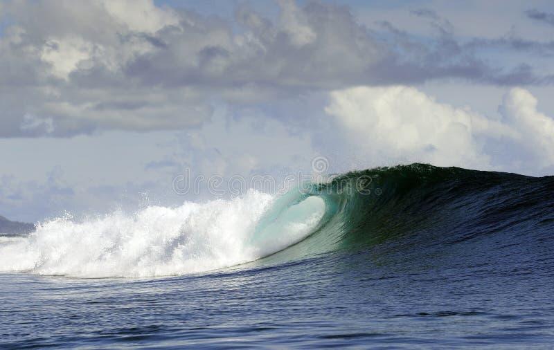Vague surfante de l'océan pacifique images libres de droits