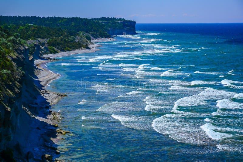 Vagues à la longue côte image libre de droits