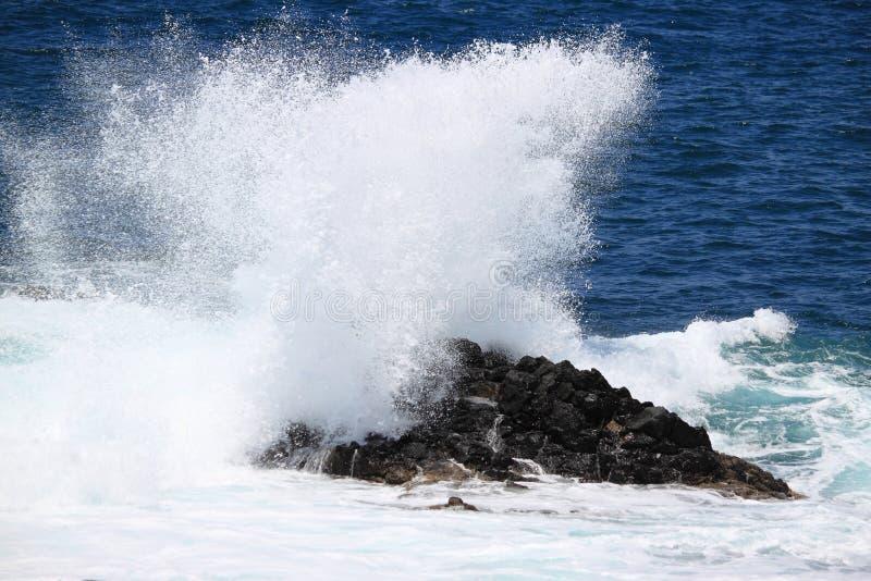 Vagues contre une falaise photos libres de droits