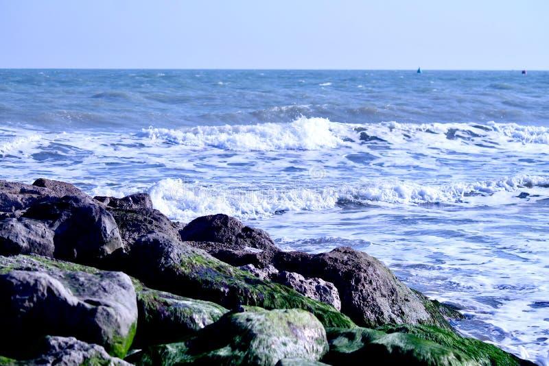 Vagues de mer venant vers des roches avec des algues photos stock