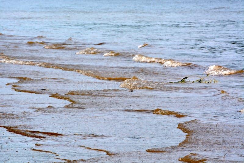 Vagues de rivière photo libre de droits