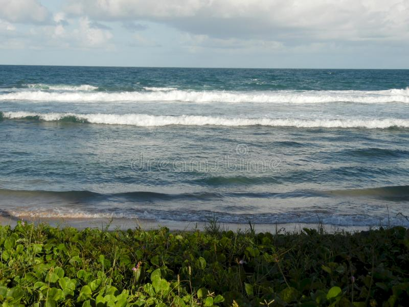 Vagues frappant sur le rivage brésilien images libres de droits
