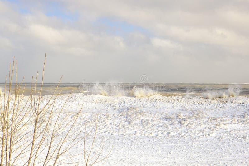 Vagues glaciales du lac Michigan au delà des branches stériles Chicago images libres de droits