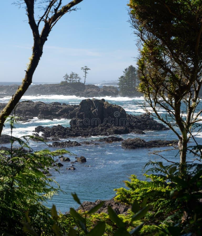 Vagues sur la ligne de rivage rocheuse images stock