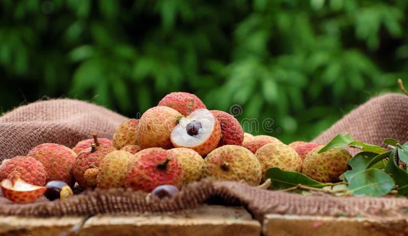 Vai thieu Vietnam, lychee fruits. Close up of litchi fruit or lychee fruits, a tropical agriculture product at Luc Ngan, Bac Giang, Vietnam, basket of Vai thieu royalty free stock photos