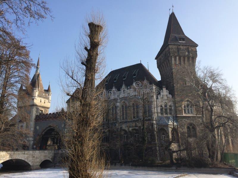 Vaidahunyad kasztel w Budapest fotografia stock