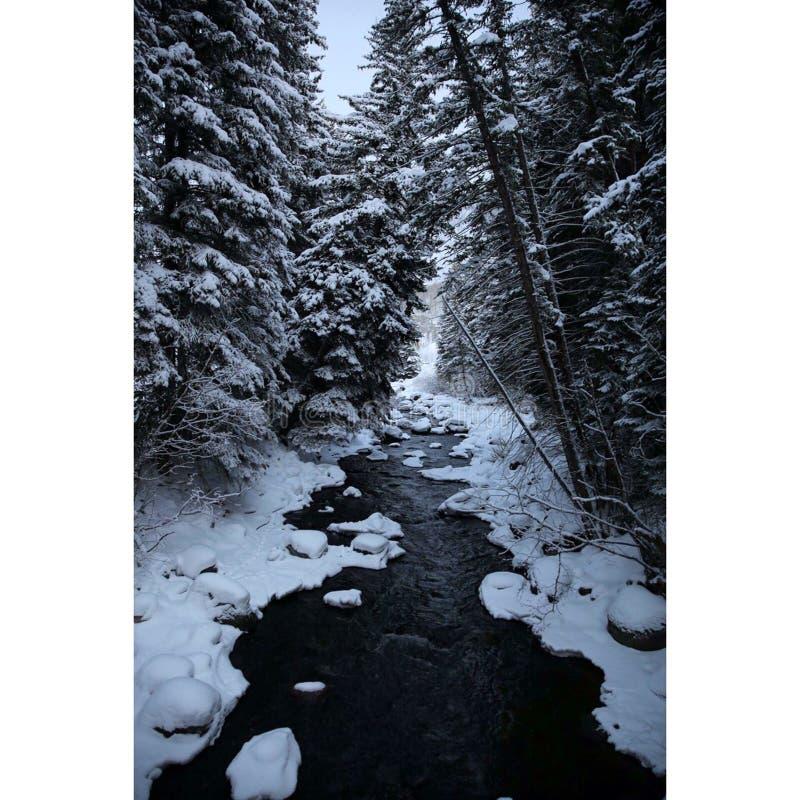 Vail, Colorado fotografie stock