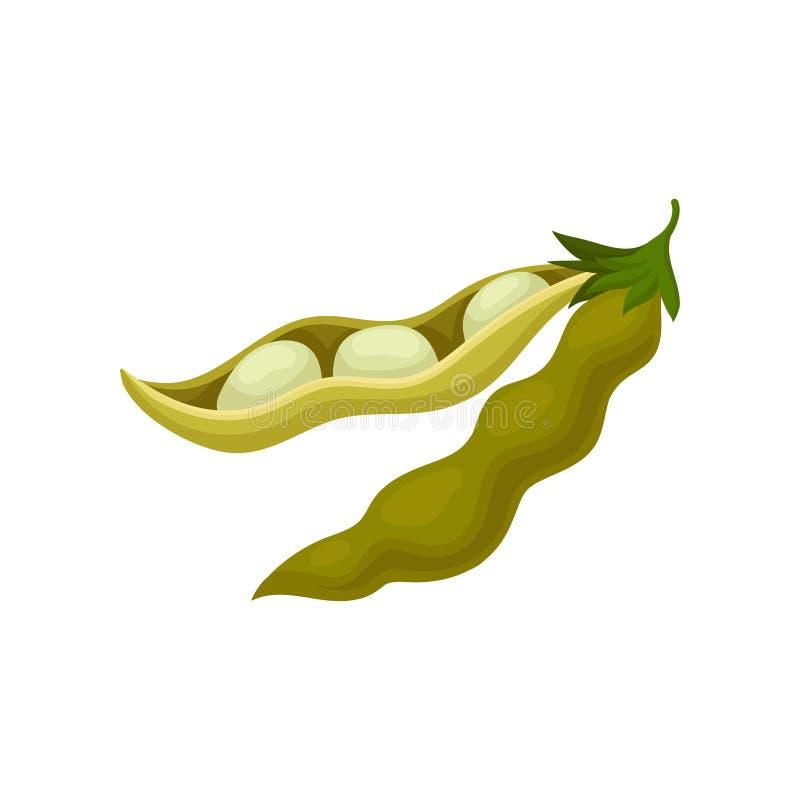 Vaina de haba de soja, ejemplo vegetariano sano del vector de la comida en un fondo blanco libre illustration