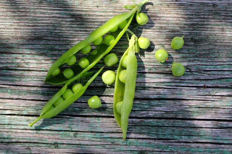 Vainas de guisante abiertas jovenes verdes frescas en la tabla de madera foto de archivo libre de regalías