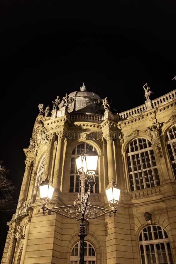 Vajdahunyad Castle Άποψη νύχτας στη Βουδαπέστη, Ουγγαρία στοκ εικόνα με δικαίωμα ελεύθερης χρήσης