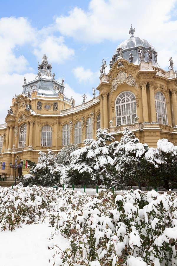 Vajdahunyad Castle, Budapest. Vajdahunyad Castle in snow at winter day, Budapest, Hungary stock photography
