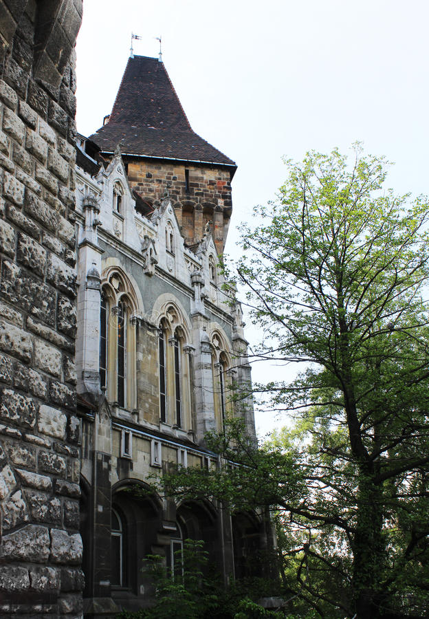Vajdahunyad Schloss lizenzfreies stockbild
