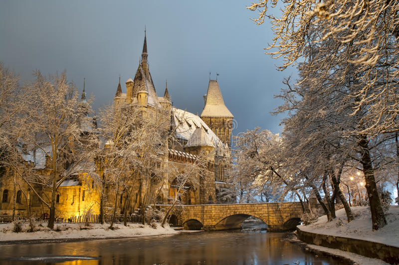 Vajdahunyad-Schloss nachts stockfotos