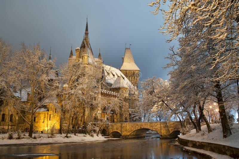 Vajdahunyad slott på natten arkivfoton