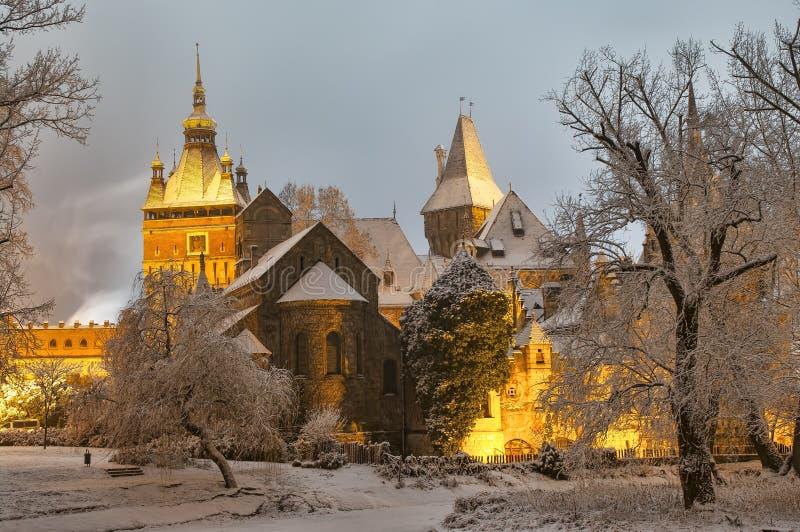 Vajdahunyad slott på natten royaltyfri fotografi