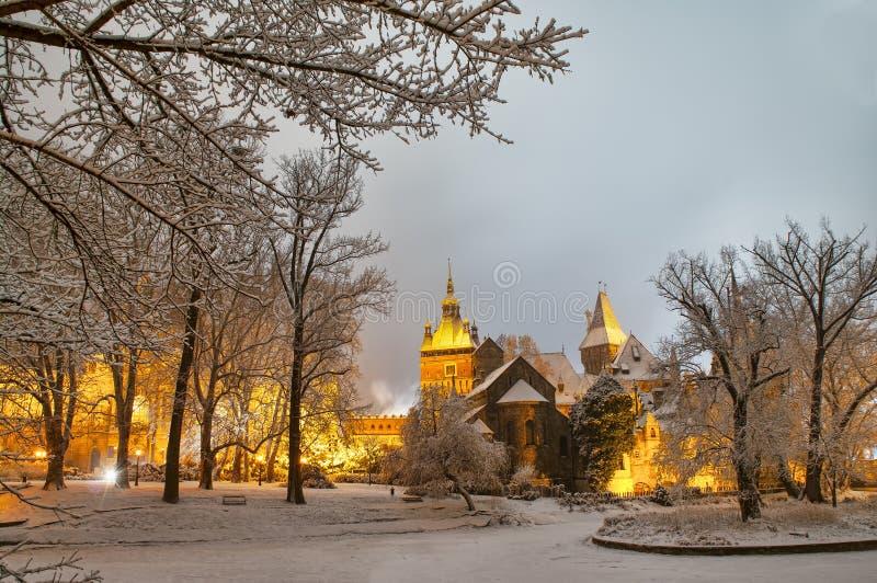 Vajdahunyad slott på natten royaltyfri foto