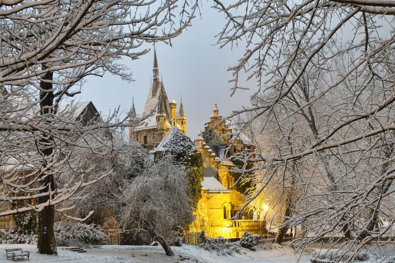 Vajdahunyad slott på natten royaltyfria bilder