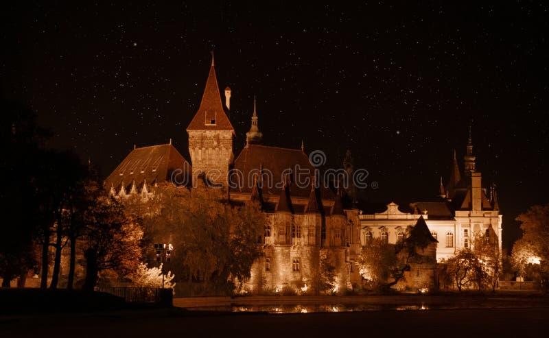 Vajdahunyadkasteel in Boedapest bij nacht stock foto's