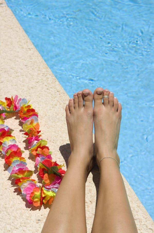 Vakantie Gratis Stock Foto's